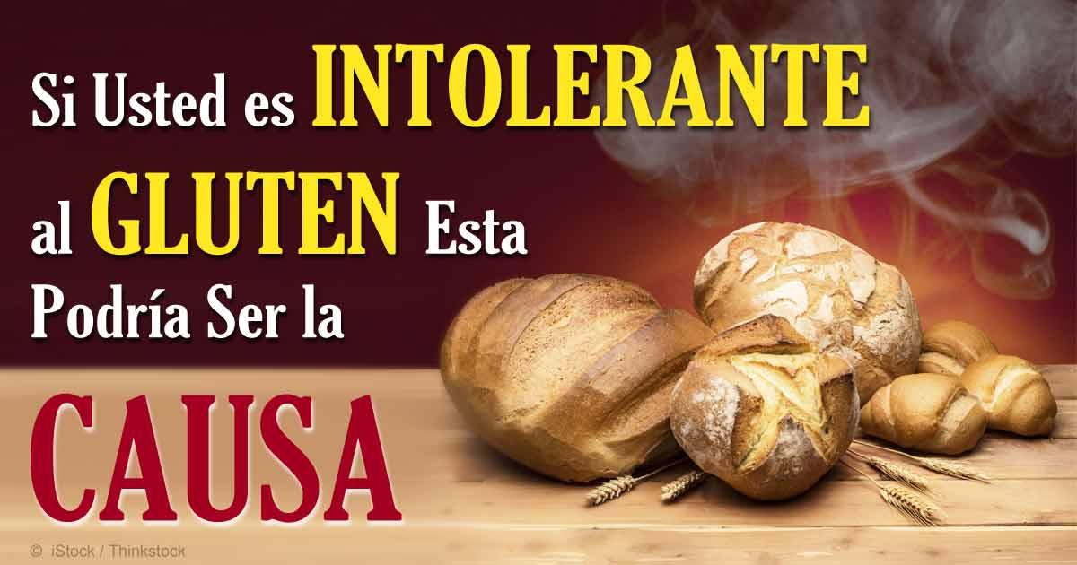 intolerante-al-gluten-causa-fb